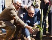 محافظة أسوان تطلق فعاليات الحملة الزراعية لزراعة 3 الاف شجرة بمدارس المحافظة