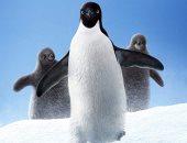 ديزنى تطرح أول تريلر للفيلم الوثائقى عن حياة البطاريق Penguins