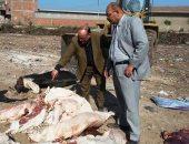 صور.. حبس عامل ضبط بحوزته 1.5 طن لحوم حيوانات نافقة فى سوهاج