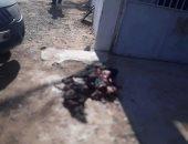 """""""الصحة الليبية"""": 5 قتلى و20 جريحا حصيلة الاشتباكات المسلحة جنوب طرابلس"""