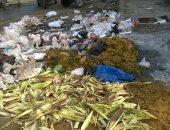 شكو ى من انتشار القمامة والحيوانات النافقة فى منطقة المدبح بالسيدة زينب
