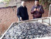 صور.. ضبط 6 طن أسماك نافقه قبل بيعها فى الأسواق بالبحيرة
