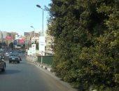 مناشدة بتقليم أفرع أشجار تخرج من سور كوبرى أكتوبر باتجاه البطل أحمد عبد العزيز