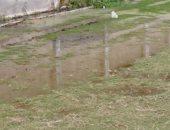 مياه الصرف الصحى تغمر مركز شباب طحانوب بالقليوبية ومناشدة بشفط المياه
