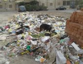 قارئ يشكو من انتشار القمامة والكلاب الضالة بحى شرق مدينة نصر
