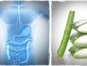 صحتك فى وصفة.. الألوفيرا والنعناع الفريش لعلاج عسر الهضم