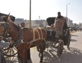 """رئيس مدينة الأقصر: """"كول سنتر"""" بأوبر حنطور لتسهيل التواصل مع شركات السياحة"""