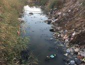 """أهالى برية لاصيفر فى كفر الشيخ يستغيثون من مصرف قريتهم: """"زبالة وفئران وأمراض"""""""