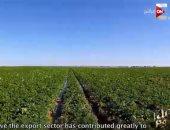 """""""كل يوم"""" يعرض تقريرا حول التنمية الزراعية المتكاملة بمصر منذ تولى الرئيس الحكم"""