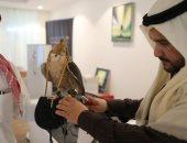 انطلاق مهرجان الملك عبد العزيز الأول للصقور 25 يناير الجارى فى السعودية