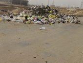 قارئة تشكو من انتشار القمامة بمنطقة الحى العاشر فى مدينة نصر