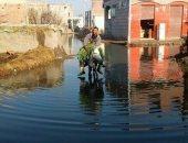 مياه الصرف الصحى تحاصر شوارع قرية عزب الخليج بحرى فى كفر الشيخ