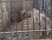 رئيس الآثار الإسلامية: نبدأ ترميم قبة الأشرف خاتون بعد معالجة المياه الجوفية