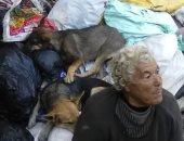 """صور.. فريق التدخل السريع بـ""""التضامن"""" ينقذ حالات بلا مأوى فى شوارع المحافظات"""