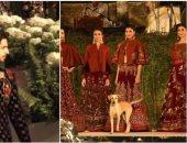 كل الجو على الـruway.. كلب ضال يخطف الأضواء من عارضات الأزياء فى الهند