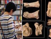 نشرة الثقافة.. الإنسان استغل الكلب من 12 ألف سنة.. وهكذا تولى إسماعيل الحكم