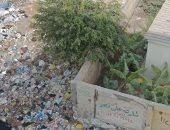 القمامة تحاصر سور مدرسة توفيق الحيكم الإعدادية بالحى العاشر بمدينة نصر