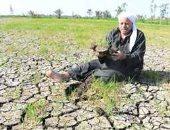قارئ يوجه نداء للمسئولين لعلاج نقص مياه الرى بقرية طبهار بالفيوم