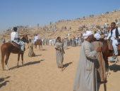 غدا.. انطلاق مهرجان الخيول العربية فى دورته الـ24 بالشرقية