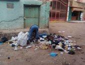 شكوى من انتشار القمامة والحيوانات النافقة فى مقابر مركز زفتى