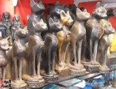 """بالنسبة لهم مش نحس.. السياح يشترون """"القط الأسود"""" لجلب الحظ"""