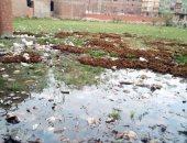 انتشار مياه الصرف الصحى فى شارع صبحى سليمان بالقليوبية