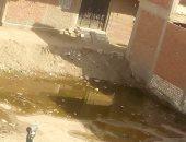شكوى من استمرار انتشار مياه الصرف الصحى بشارع المسابك بمنطقة بشتيل