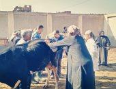 رفع كفاءة الوحدات البيطرية وإمدادها بالأدوية والمعدات لرعاية الحيوانات