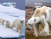 نحن نقتل الكوكب.. حملات تكشف خطورة البشرية على التوازن البيئى