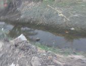 شكوى من تراكم القمامة بترعة قرية ميت سويد بمحافظة الدقهلية