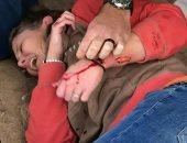 مبيحبش التصوير.. نمر يهاجم امرأة بحديقة حيوان أمريكية بسبب سيلفى.. صور