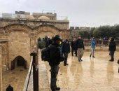 شاهد..مستوطنون إسرائيليون يقتحمون ساحات الأقصى وينفذون جولات استفزازية