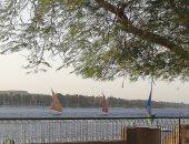 صور.. المراكب الشراعية بأسوان تقدم عروض بنهر النيل حاملة إعلام الدولة الأفريقية