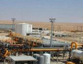 """مصانع الإسالة """"أيقونة"""" تصدير الغاز والتحول لمركز إقليمى للطاقة.. اعرف التفاصيل"""