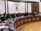 الحكومة: تشكيل لجان للمرور على المحافظات للإعداد لبطولة الأمم الأفريقية