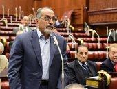 فيديو وصور.. نقيب التشكليين يطالب بتمثيل النقباء المهنيين بـ 25% فى مجلس الشيوخ