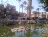 شكوى من تلوث مياه الشرب بقرية كفر طحا فى القليوبية