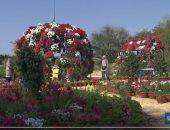 تصدير 45 ألف طن زهور ونباتات زينة بـ 52 مليون دولار فى 9 أشهر