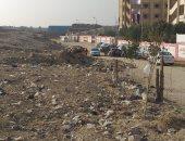 شكوى من انتشار الكلاب الضالة وأكوام القمامة داخل أرض فضاء بالمعصرة