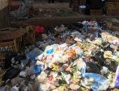 البيئة ترفع مخلفات القمامة من أمام مستشفى ميت غمر بالدقهلية