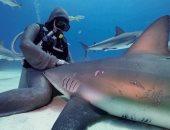 اعرف سر غطاسه إيطالية تجلس أسماك القرش على ركبتيها؟..صور وفيديو
