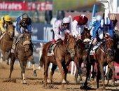 تقارير إنجليزية: كأس دبى للخيول الأغلى فى العالم وجوائزه 12 مليون دولار