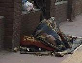 استغاثة لإنقاذ مشرد من برودة الجو أمام مستشفى الدمرداش