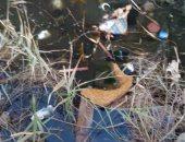 شكوى من انتشار مياه الصرف الصحى بمدينة حدائق أكتوبر