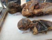 """شاهد.. 3 قنوات عالمية تبرز اكتشاف """"مقبرة توتو"""" بسوهاج على شاشاتها"""