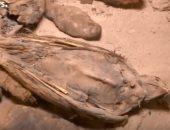 """شاهد.. يورونيوز تحتفى باكتشاف مقبرة """"توتو"""" بسوهاج"""