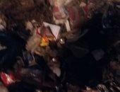 شكوى من انتشار القمامة بمنطقة عين شمس