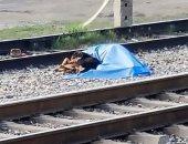 وفاء كلب.. رفض ترك صاحبه الميت بعد دهسه من قطار .. صور