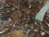 الجيزة تضبط 22 طن تمور فاسدة داخل مصنع بالبدرشين قبل توزيعها بالأسواق