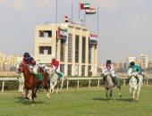 غدا.. انطلاق النسخة 26 لكأس رئيس الدولة للخيول العربية من القاهرة